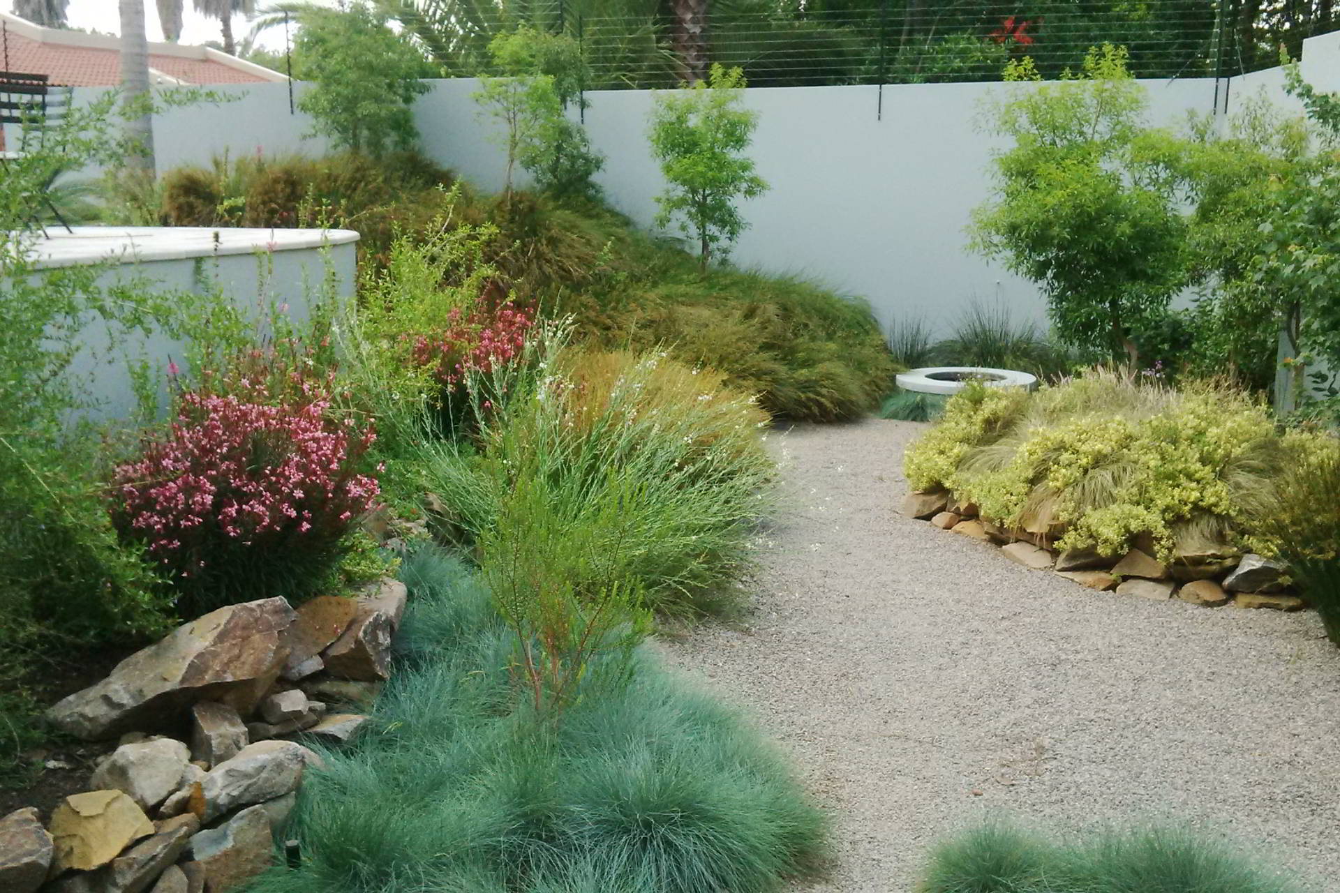 Lush planting with plenty of texture and colour