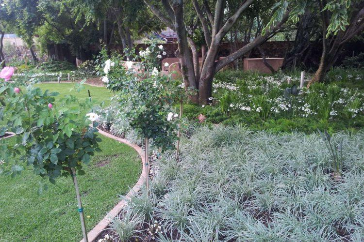 Lush informal woodland landscaping